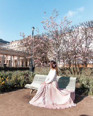 Cherry blossom ParisPalais Royal