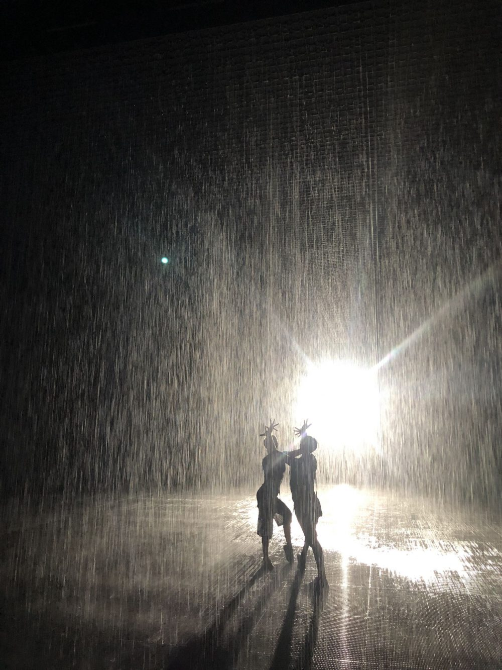 Rain Room Sharjah