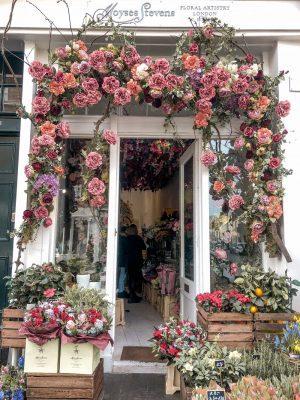 Moyses Stevens London